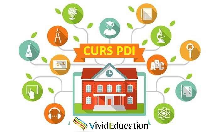 Curs online Plan de Dezvoltare Instituțională (PDI/PAS)